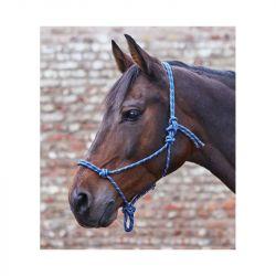 Licol éthologique cheval