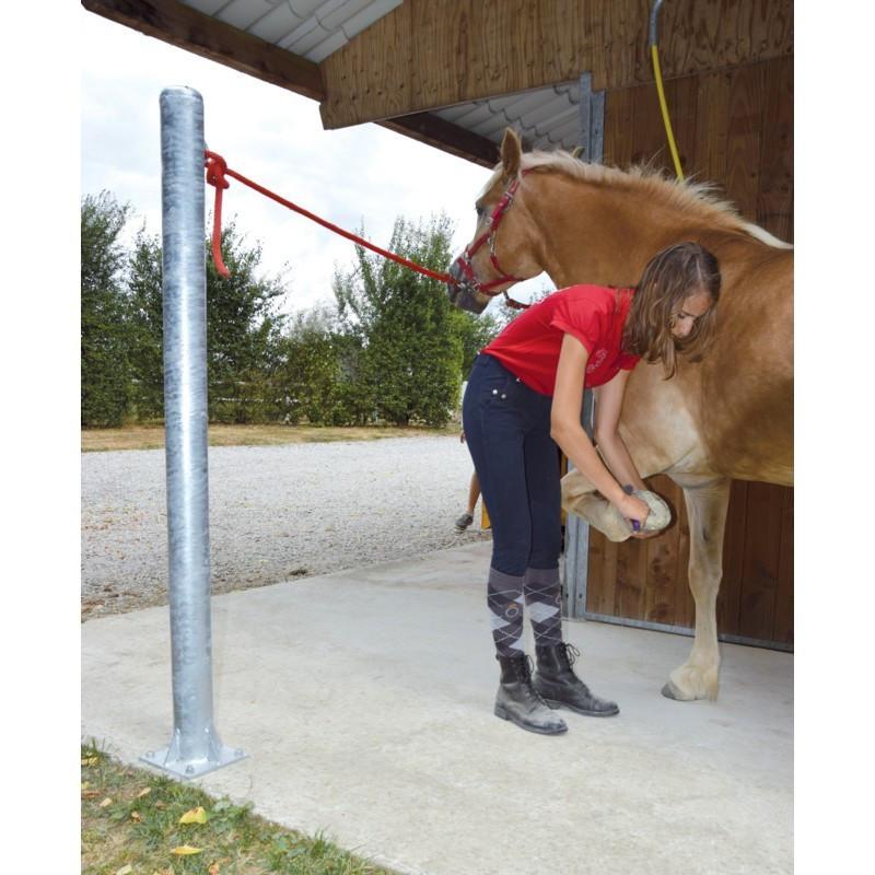 Poteau d'attache pansage du cheval - La Gée - Le Paturon