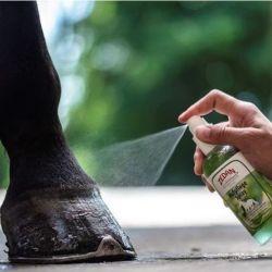 2 Soin sabot cheval spray Zedan - Le Paturon