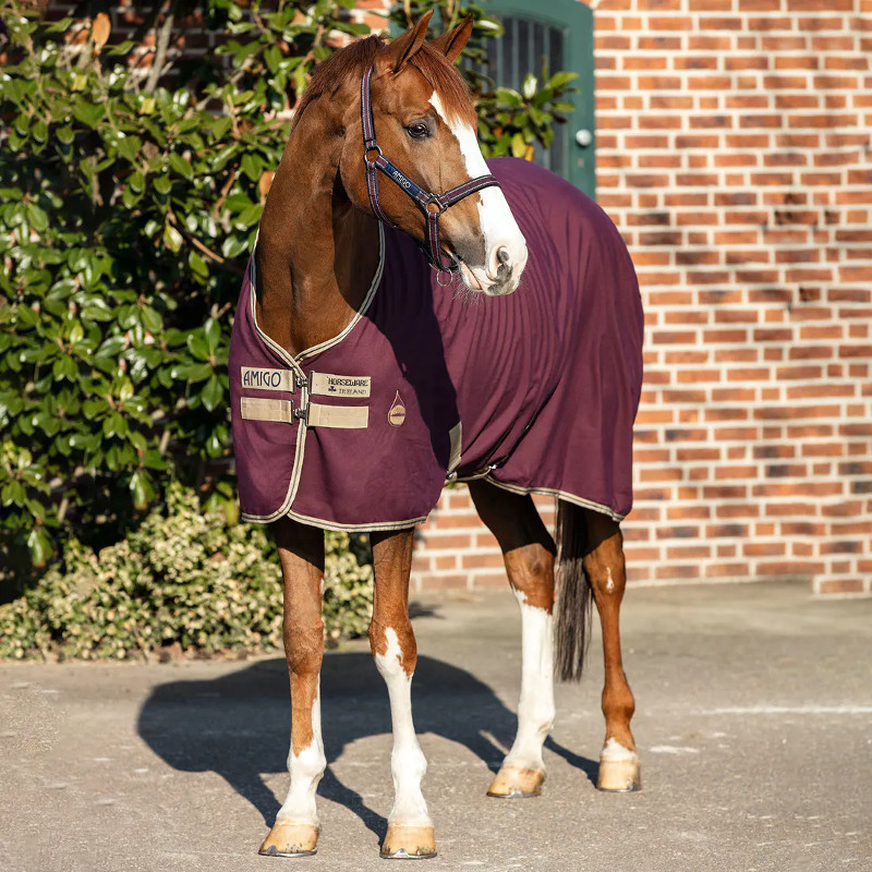 5 Amigo Stable Sheet Horseware, Couverture transport cheval Figue - Le Paturon