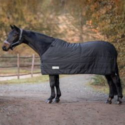 Sous-couverture cheval Thermo System 100g Waldhausen - Le Paturon