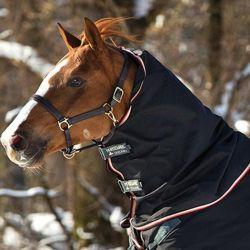 Couvre-cou extérieur cheval Rambo Optimo 150g Horseware - Le Paturon