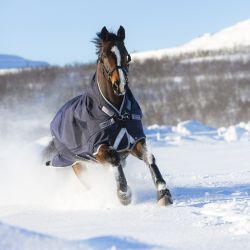 Couverture extérieur cheval Rambo Wug 200g encolure haute Horseware - Le Paturon