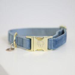 Collier pour Chien Velvet Kentucky - Le Paturon