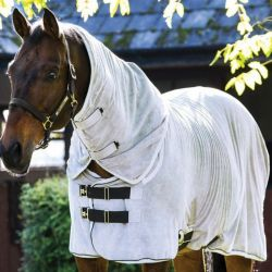 Chemise séchante cheval microfibre Rambo Dry Horseware - Le Paturon