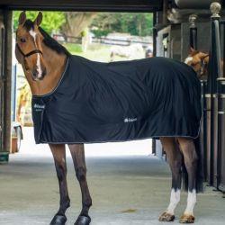 Couverture cheval Shamrock Power Bucas - Le Paturon