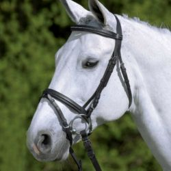 Bridon cheval Diamond cuir Waldhausen muserolle combinée - Le Paturon