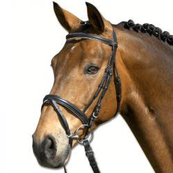 Bridon cheval Lifestyle cuir muserolle combinée Waldhausen - Le Paturon
