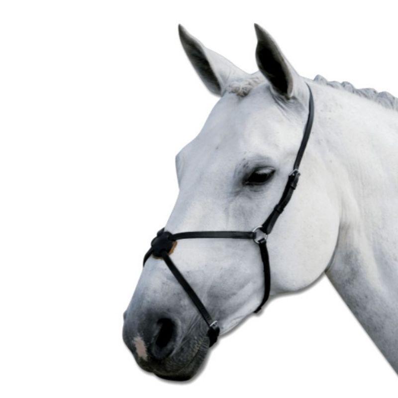 Muserolle cheval croisée cuir Waldhausen - Le Paturon