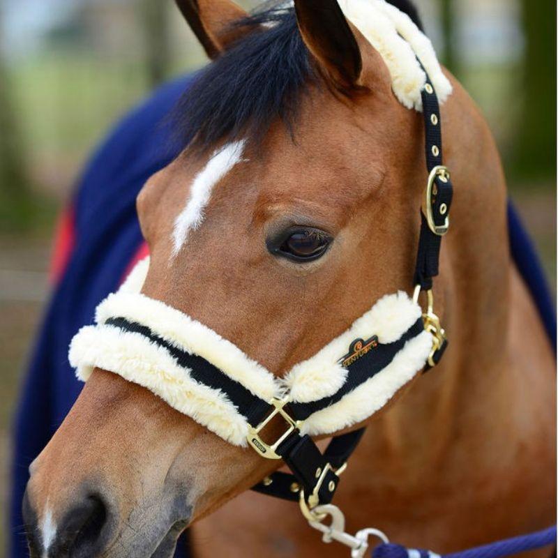 Licol cheval Nylon Mouton Naturel Kentucky - Le Paturon