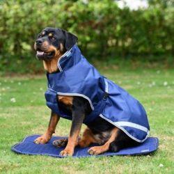 Tapis chien Therapy Bucas - Le Paturon