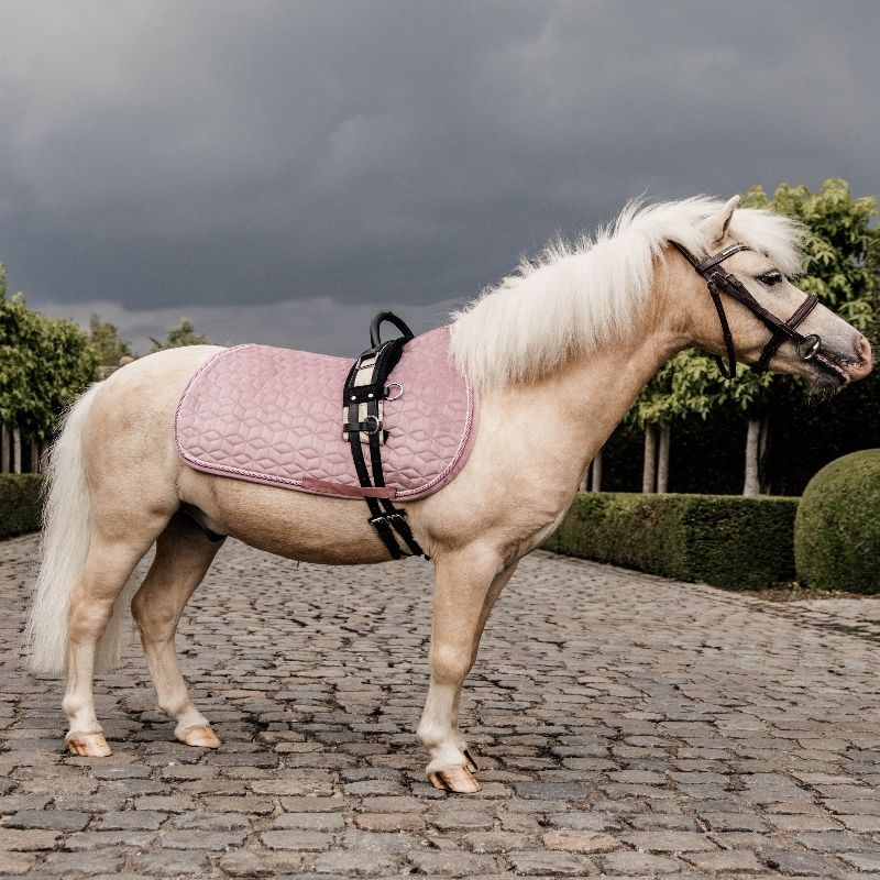 Tapis de selle poney Velvet Kentucky - Le Paturon