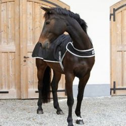 Couverture marcheur cheval imperméable et respirante Stable Pro - Le Paturon