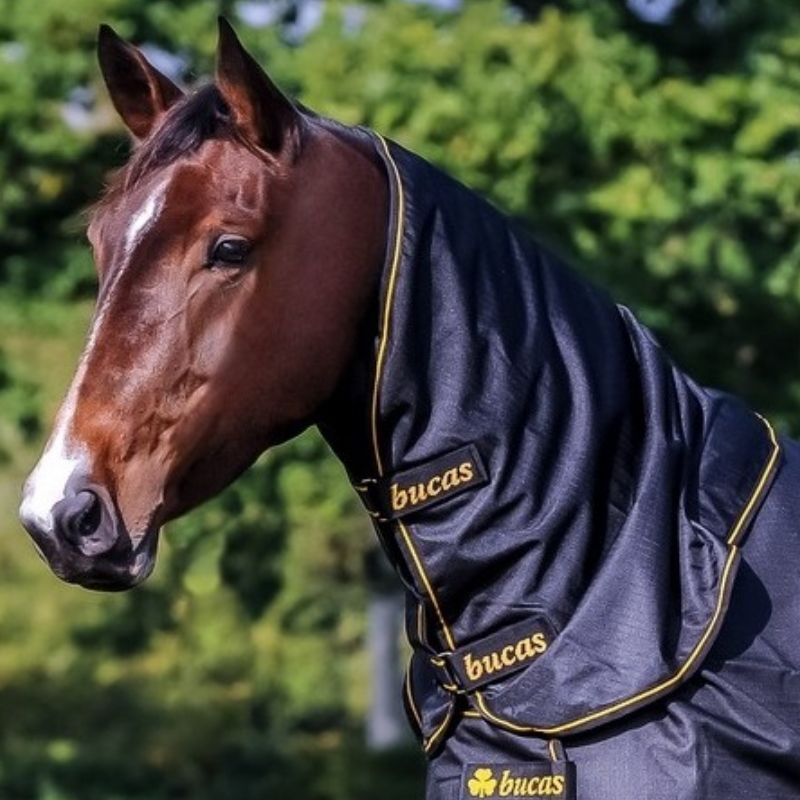Camail cheval Irish Light 0g Bucas - Le Paturon