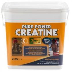 Poudre orale renforcement musculaire cheval Pure Power Creatine Energie 2,25kg TRM - Le Paturon