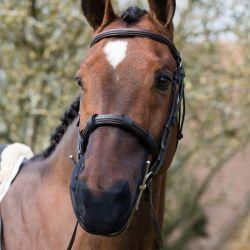 Protège Naseaux cheval Equilibrium Net Relief - Le Paturon