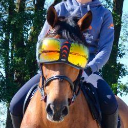 Masque lunettes eVysor protection cheval eQuick orange miroir - Le Paturon