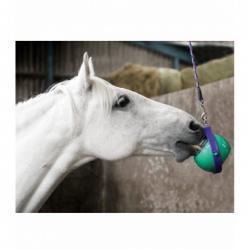 Support Likit Boredom Buster pierre 250g cheval - Le Paturon