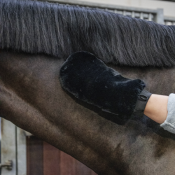 Gant Kentucky Grooming Deluxe pansage cheval mouton noir - Le Paturon