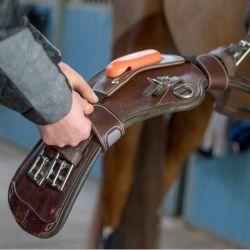 Equisense Pack Motion Sport cheval marron - Le Paturon