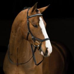 Bridon Horseware cheval Micklem Diamante Rambo - Le Paturon