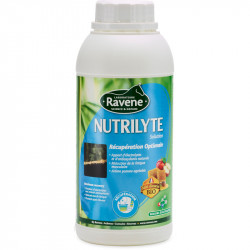 Nutrilyte Solution Ravene - Electrolytes Cheval