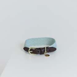 Collier chien Kentucky Jacquard bleu clair - Le Paturon