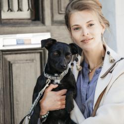 Collier Kentucky chien Pied-de-poule brun - Le Paturon