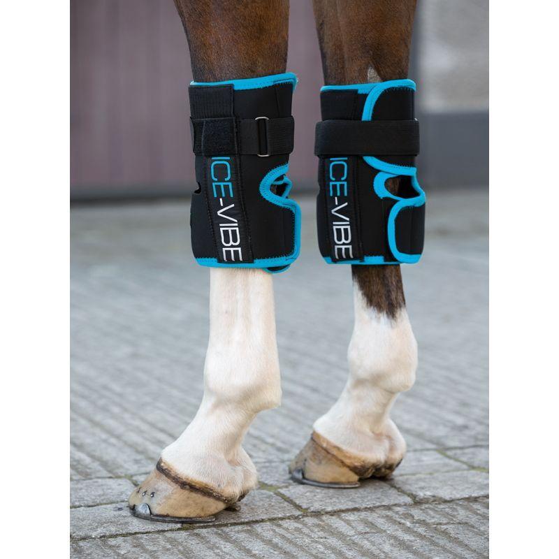 Protège genoux cheval Ice Vibe Horseware - Le Paturon