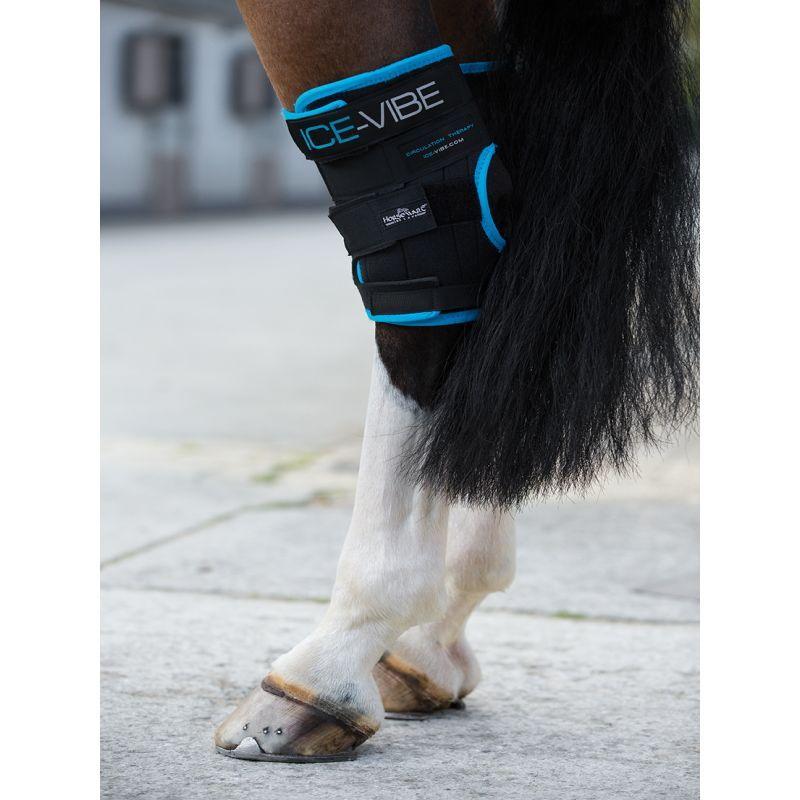 Protège jarrets massage Ice Vibe Horseware - Le Paturon