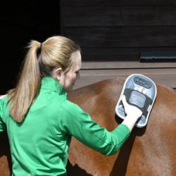 Gant Equilibrium massage cheval - Le Paturon