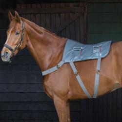 Tapis Equilibrium cheval massage - Le Paturon