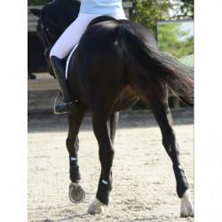 Guêtres Stretch and Flex cheval Equilibrium velcro noir - Le Paturon