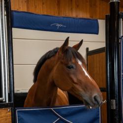 Protection de tête Dy'on cheval box - Le Paturon