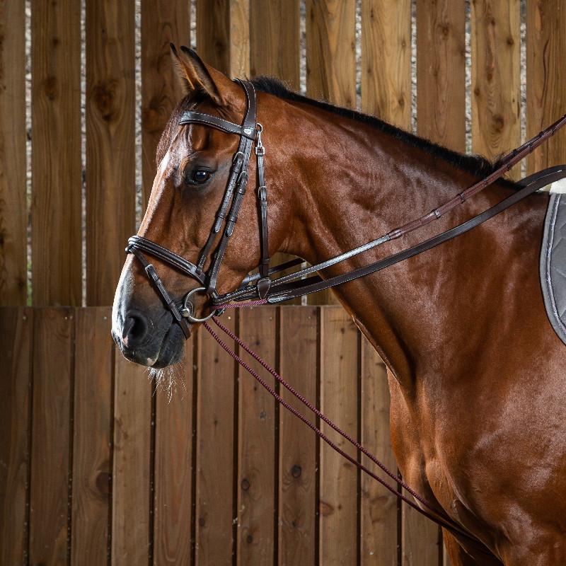 Rênes allemandes cheval Working by Dy'on cuir et nylon noisette - Le Paturon