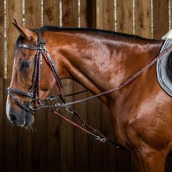 Gogue cheval Working by Dy'on corde et nylon noisette - Le Paturon