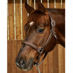 Licol Working by Dy'on transport et grooming cheval cuir noisette - Le Paturon