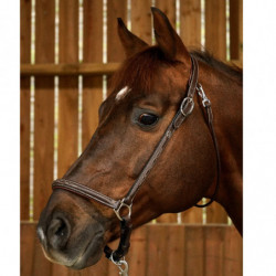 Licol Working by Dy'on pansage grooming cheval cuir noisette - Le Paturon