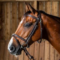 Bridon cheval muserolle combinée Working By Dy'on noisette - Le Paturon