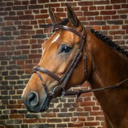 Bridon Dy'on cheval muserolle combinée D Collection noisette - Le Paturon