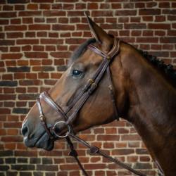 Bridon Dy'on cheval muserolle combinée anatomique D Collection noisette - Le Paturon