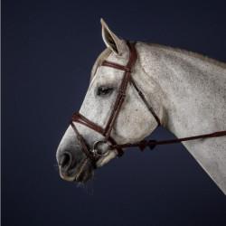 Bridon Dy'on cheval muserolle combinée anatomique New English Collection noisette - Le Paturon