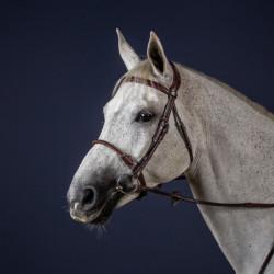 Bridon Dy'on cheval New English Collection corde et cuir noisette - Le Paturon