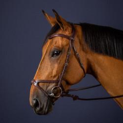 Bridon Dy'on X-Fit New English Collection cheval noisette - Le Paturon