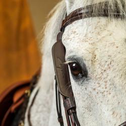 Montants oeillères Dy'on Focus cheval noisette - Le Paturon