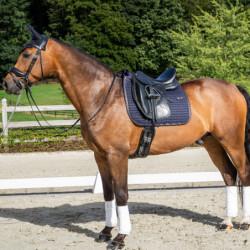 Tapis Dy'on Classique dressage cheval - Le Paturon