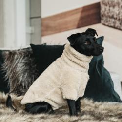 Pull Kentucky chien Teddy Fleece - Le Paturon