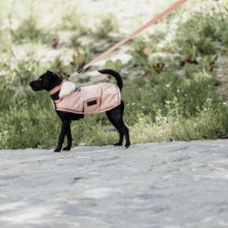 Manteau chien Kentucky imperméable 160g - Le Paturon