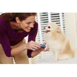 Tondeuse Oster chien Mini sans fil - Le Paturon
