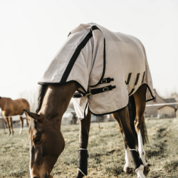 Chemise Kentucky anti-mouche Mesh cheval - Le Paturon